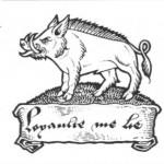 white-boar-sml