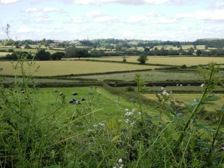 Battle of Bosworth lost again